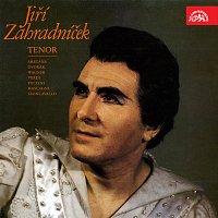 Jiří Zahradníček, Orchestr Národního divadla v Praze, Jan Hus Tichý – Jiří Zahradníček - tenor