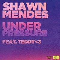 Shawn Mendes, teddy – Under Pressure