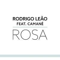 Rodrigo Leao, Camané – Rosa (Camané)