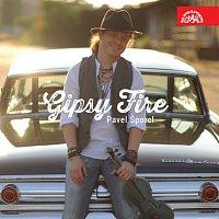 Pavel Šporcl, Gipsy Way Ensemble – Gipsy Fire CD