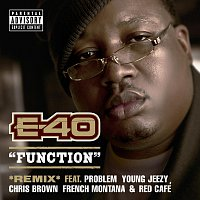 E-40, Young Jeezy, Chris Brown, Problem, French Montana, Red Cafe – Function [Remix]