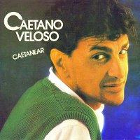 Caetano Veloso – Caetanear