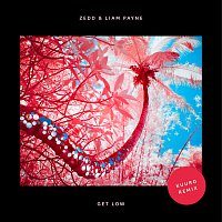 Zedd, Liam Payne – Get Low [KUURO Remix]