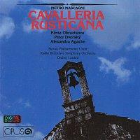 Peter Dvorský – Cavalleria Rusticana