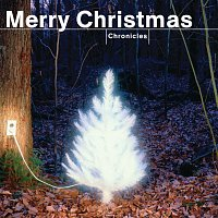 Různí interpreti – Merry Christmas