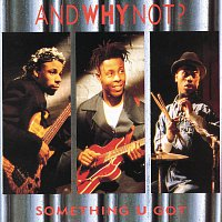 And Why Not? – Something You Got