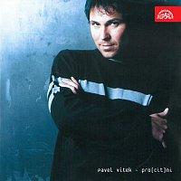 Pavel Vítek – Pro(cit)ni