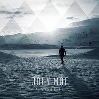 Joey Moe – Almindelig