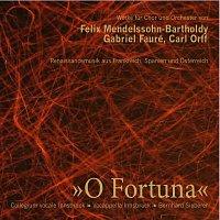 Collegium vocale Innsbruck, Wiener Kammerorchester, Cappella Istropolitana – O Fortuna