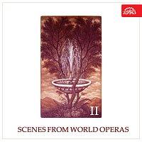 Různí interpreti – Scény ze světových oper II.