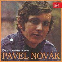 Pavel Novák – Znám jednu píseň...
