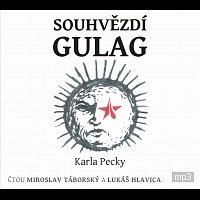 Miroslav Táborský, Lukáš Hlavica – Pecka: Souhvězdí Gulag (MP3-CD) CD-MP3