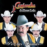 Cardenales De Nuevo León – Por Las Damas