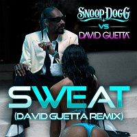 Snoop Dogg, David Guetta – Sweat/Wet