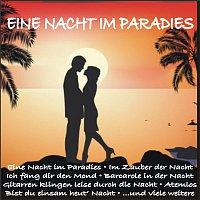 Audrey Landers – Eine Nacht im Paradies