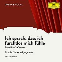 Maria Cebotari, Orchester der Deutschen Oper Berlin, Gerhard Steeger – Bizet: Carmen, WD 31: Ich sprach, dass ich furchtlos mich fuhle [Sung in German]