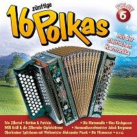 Různí interpreti – 16 zunftige Polkas mit der steirischen Harmonika Folge 6