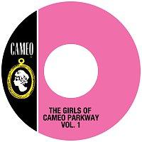 Různí interpreti – The Girls Of Cameo Parkway Vol. 1