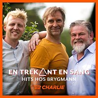 Various Artists.. – En Trekant En Sang - Hits Hos Brygmann