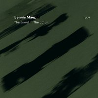 Bennie Maupin – The Jewel In The Lotus