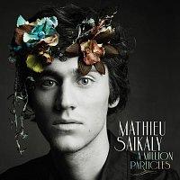 Mathieu Saikaly – A Million Particles