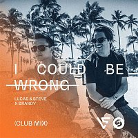 Lucas & Steve, Brandy – I Could Be Wrong (Club Mix)