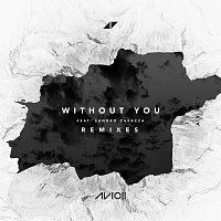 Avicii, Sandro Cavazza – Without You [Remixes]