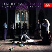 Tiburtina Ensemble – Flos inter spinas /chorál a středověká polyfonie/