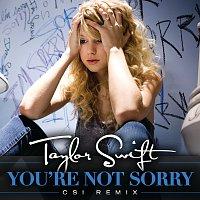 Taylor Swift – You're Not Sorry [CSI Remix]