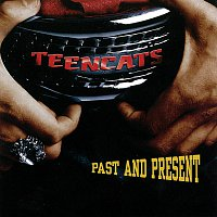 Teencats – Past And Present