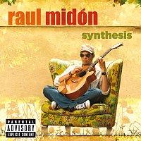 Raul Midón – Synthesis