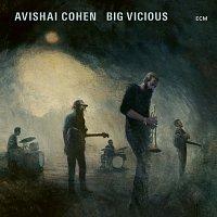 Avishai Cohen, Big Vicious – Big Vicious