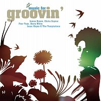 Různí interpreti – Music For Groovin'