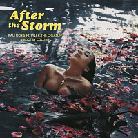 Kali Uchis, Tyler, The Creator, Bootsy Collins – After The Storm