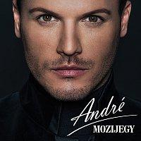 Vásáry André – Mozijegy
