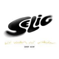 Selig – Wir werden uns wiedersehen - Best Of 2009-2013
