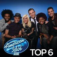 Různí interpreti – American Idol Top 6 Season 14