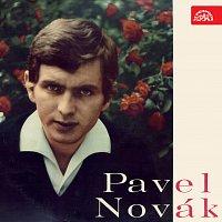 Pavel Novák – Malinká a další hity