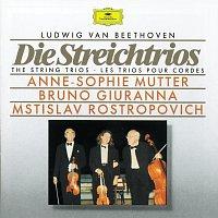 Anne-Sophie Mutter, Bruno Giuranna, Mstislav Rostropovich – Beethoven: The String Trios