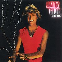 Andy Gibb – After Dark