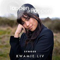 Various Artists.. – Toppen Af Poppen Synger Kwamie Liv
