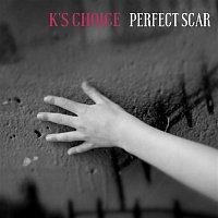 Přední strana obalu CD Perfect Scar