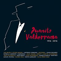 Různí interpreti – Juanito Valderrama [1916 - 2016]