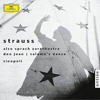 Přední strana obalu CD Richard Strauss: Also sprach Zarathustra/Don Juan/Salome:Dance of the Seven Veils