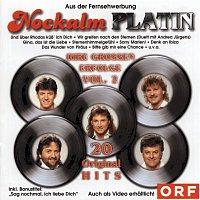 Nockalm Quintett – Platin
