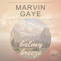 Marvin Gaye – Balmy Breeze Vol. 1