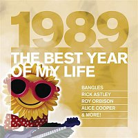 Various Artists.. – The Best Year Of My Life: 1989