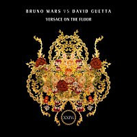 Bruno Mars, David Guetta – Versace On The Floor (Bruno Mars vs. David Guetta)