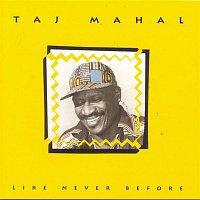 Taj Mahal – Like Never Before