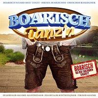 Různí interpreti – Boarisch tanz'n